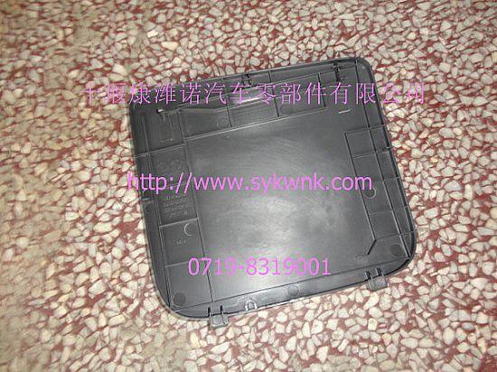 天龙保险丝盒盖5305070-c0100